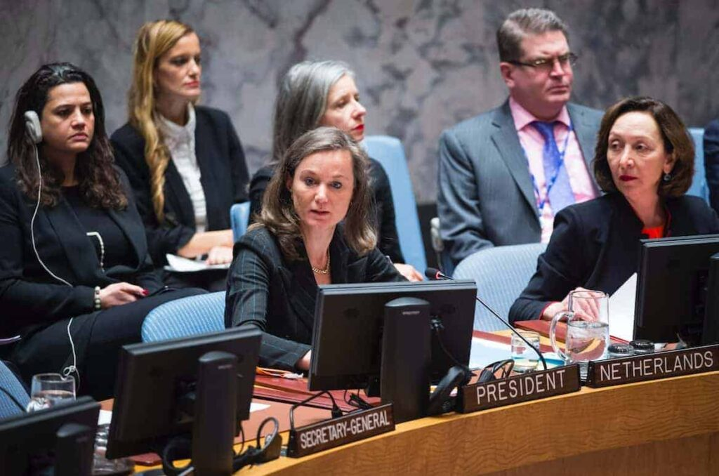 With UN Security Council Reform, Bigger Is Not Better - PassBlue