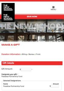 PassBlue Donation Page at the New School