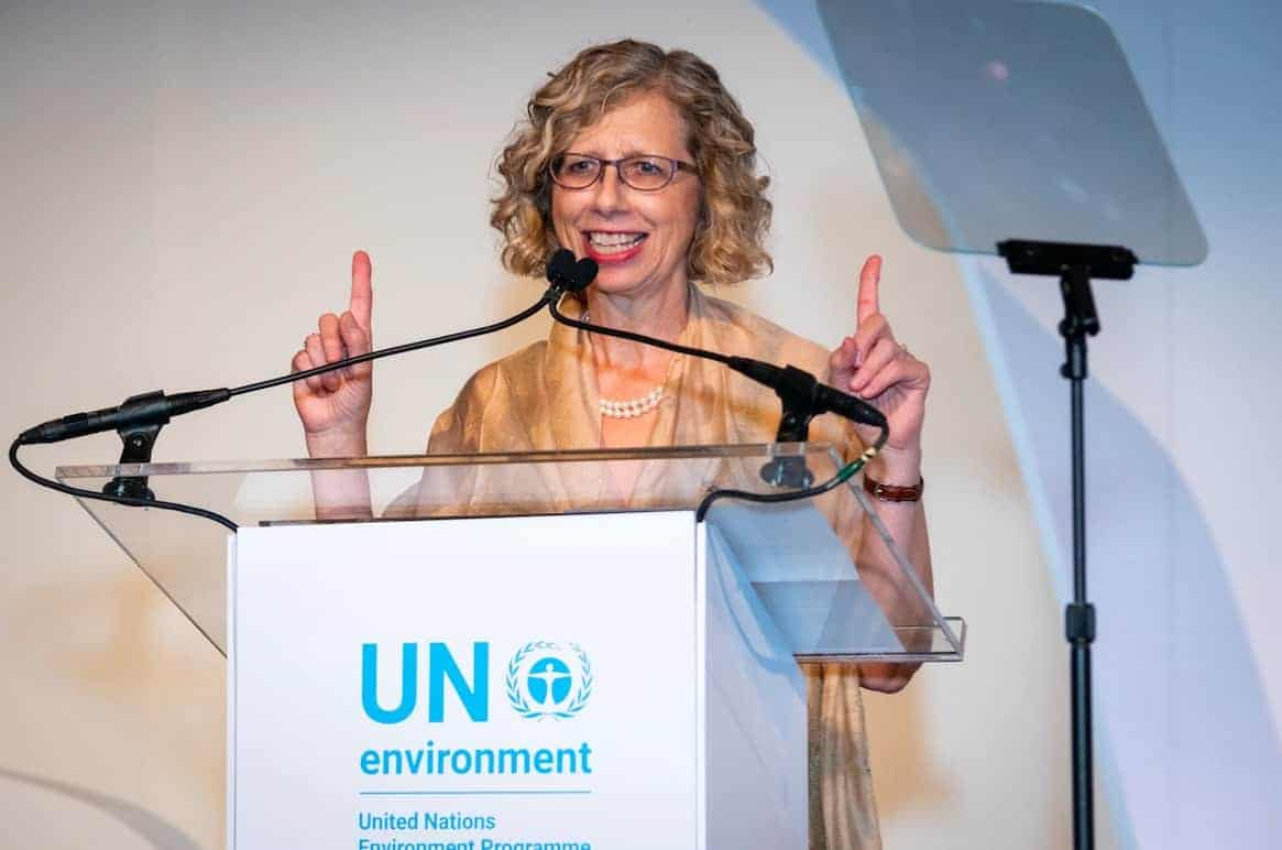 Inger Andersen, head of the UN Environment Program