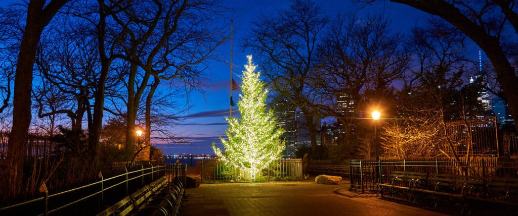 Brooklyn Heights Christmas Tree at night